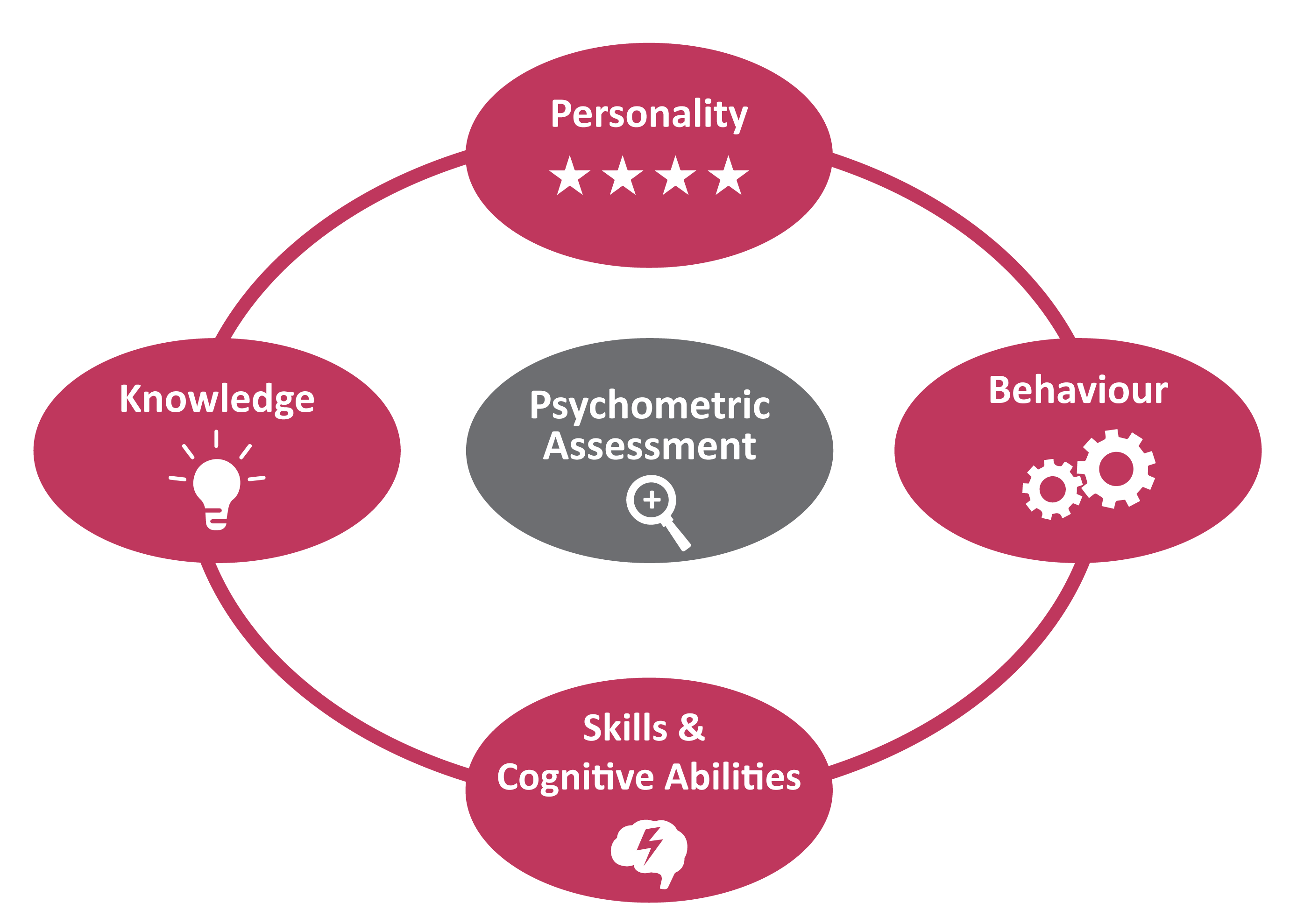 Psychometric Assessment for Team Fit | Sourced: Christchurch IT Recruitment